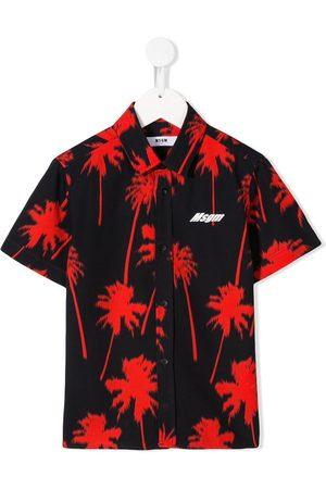 Msgm Kids Shirts - Palm tree print shirt