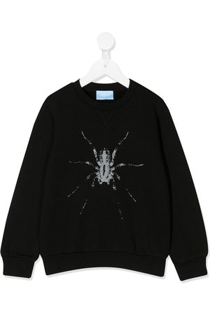 Lanvin Boys Jumpers - Spider print sweater