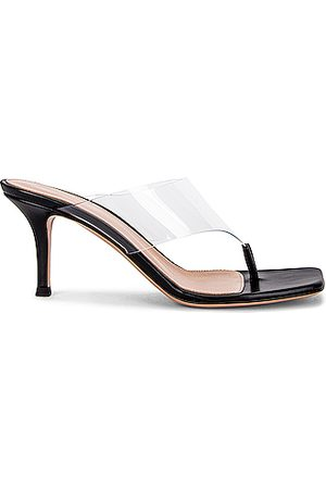 Gianvito Rossi Plexi Thong Sandals in