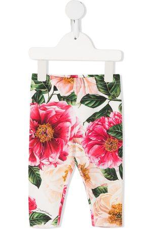 Dolce & Gabbana Camellia flower print leggings