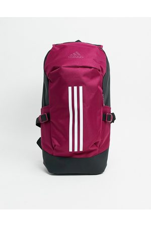 adidas Backpack in burgundy