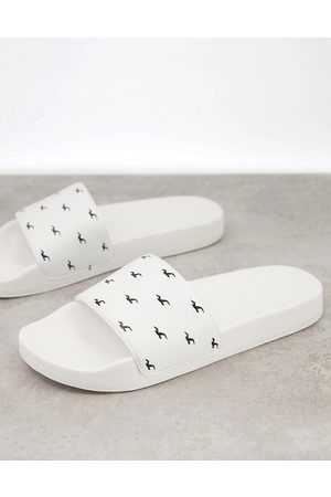 Hollister Men Sandals - Sliders in with all over seagull logo