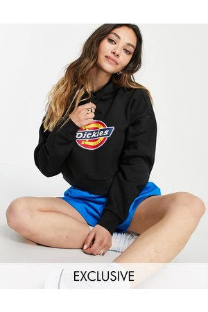 Dickies Icon Logo cropped hoodie in Exclusive at ASOS