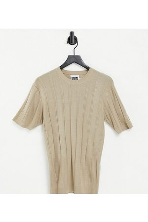 Reclaimed Vintage Inspired fitted knit short sleeve top in stone