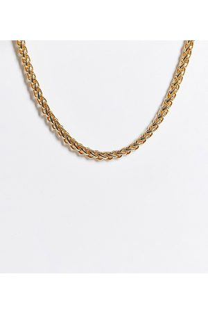 ASOS ASOS DESIGN Curve necklace in roll chain in tone
