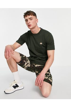 Dickies Mapleton t-shirt in olive