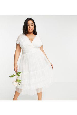 ANAYA Anaya With Love Plus tulle flutter sleeve ruffle hem midi dress in