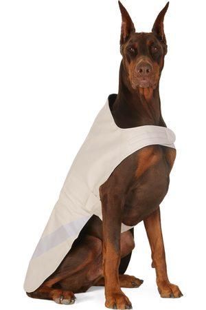 Stutterheim SSENSE Exclusive Off-White Lightweight Dog Raincoat