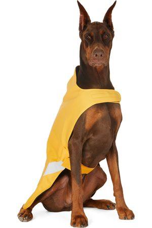 Rainwear - Stutterheim SSENSE Exclusive Lightweight Dog Raincoat