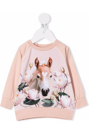 Molo Kids Water lily foal-print sweatshirt