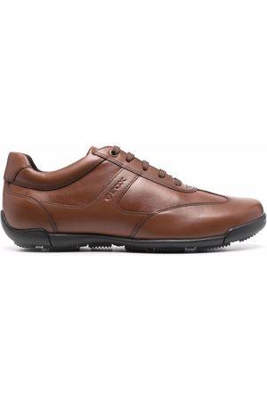 Geox Edgware A low top sneakers